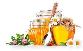 Wallpaper flowers, chamomile, honey, jars, spoon, white background, honey