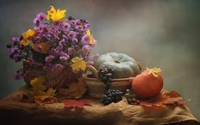 Picture autumn, leaves, flowers, bouquet, grapes, pumpkin, still life