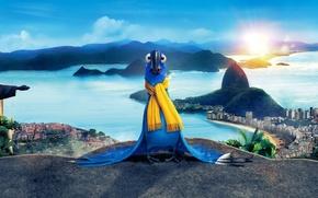 Picture city, cinema, sky, sea, landscape, bird, blue, mountains, clouds, sun, macaw, movie, animal, Brazil, buildings, …