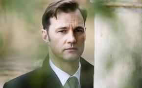 Picture face, actor, David Morrissey, David Morrissey