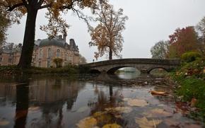 Picture house, bridge, water, pond, autumn, rain, leaves