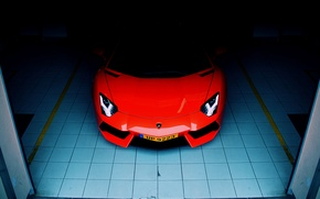 Picture Lamborghini, front, orange, garage, LP700-4, aventador