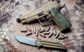 Picture Sig Sauer, Hoback Kwaiback, P226 Suppressor-Ready Scorpion