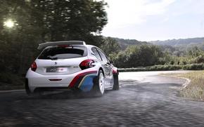Picture auto, sport, race, Peugeot, 208, Peugeot 208 T16