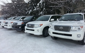Picture Toyota, Land, 200, Cruiser