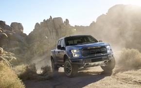 Picture Ford, dust, Ford, Raptor, Pickup, Raptor, F-150, ancestor