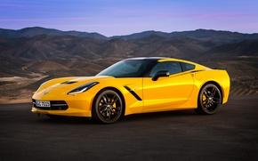 Picture Corvette, Chevrolet, Coupe, Stingray, 2013, EU-spec