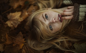 Picture eyes, look, girl, foliage, portrait, sweater