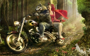 Wallpaper wolf, motorcycle, little red riding hood