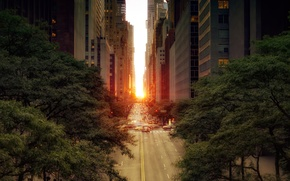 Picture road, the sun, trees, machine, the city, street, foliage, building