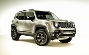 Picture jeep, Jeep, Trailhawk, 2015, Renegade, Hard Steel