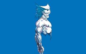 Picture background, claws, Wolverine, Logan, Wolverine, Logan, comic, MARVEL Comics