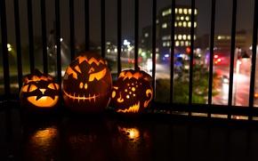 Picture night, Halloween, pumpkin