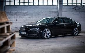 Picture Audi, Audi, TDI, wheels, black, frontside
