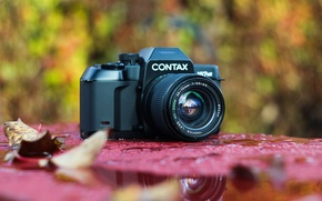 Picture macro, background, camera, Yashica lens, Contax 167MT