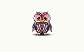 Picture color, owl, paint, minimalism