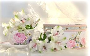 Picture box, Cup, Alstroemeria