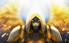 Picture Light, World of Warcraft, game, wow, Priest, Healer, Tier 5