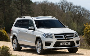 Picture machine, trees, Mercedes-Benz, Mercedes, AMG, Sports Package, BlueTec, GL 350