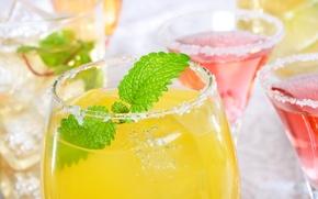 Picture ice, glasses, juice, cocktail, mint, salt, Margarita, tequila