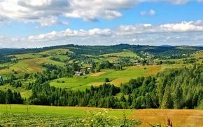Picture mountains, nature, Carpathians