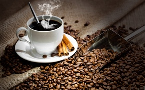 Picture Cup, drink, coffee, hot, saucer, grain, cinnamon, spoon, blade