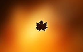 Picture autumn, sheet, Autumn