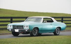 Picture retro, fence, Chevrolet, 1970, meadows., Chevelle