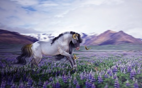 Picture butterfly, flowers, mountains, nature, horse, by ellipsiem
