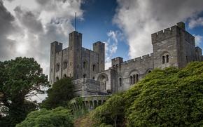 Picture England, the bushes, England, Gwynedd, Penrhyn Castle, North Wales, Penrhyn Castle, Bangor, Bangor, North Wales