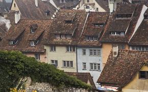 Wallpaper roof, Switzerland, Schaffhausen