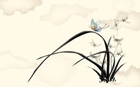 Wallpaper flowers, figure, butterfly