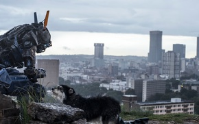 Picture Chappie, The robot named Chappy, I am wonder, I am discovery, I am chappie