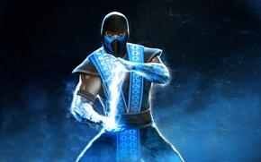 Picture cold, ninja, Mortal Kombat, Sub-Zero, Sub-Zero