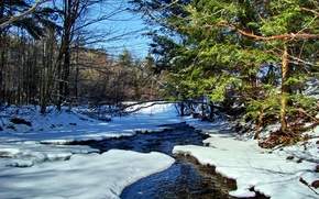 Picture landscape, snow, trees, stream, spring, the sky, river, forest