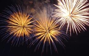 Wallpaper fireworks, night, salute