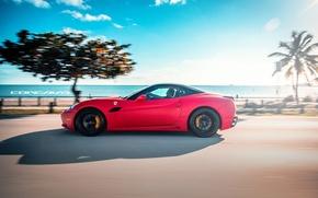 Picture machine, auto, Ferrari, auto, California, label, Wheels, Concave, Matte Red