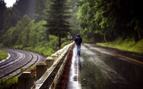 Picture road, rain, the fence