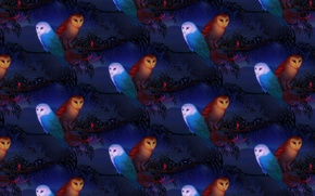 Picture night, background, owl, branch, art