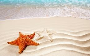 Picture sand, sea, beach, silhouette, surf, starfish