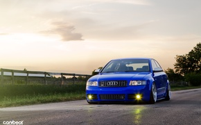 Picture stence, Audi S4, VAG