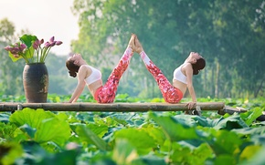 Picture summer, flowers, nature, girls, concentration, gymnastics, yoga, Asian girls