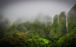 Picture mountains, fog, vegetation, waterfalls