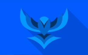 Picture bird, wings, vector, bird, blue, flat