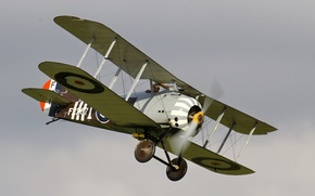 Picture fighter, British, single, The first world war, times, replica, Sopwith 7F1 Snipe