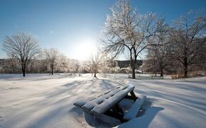 Wallpaper winter, snow, nature, winter walls