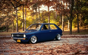 Picture Audi, blue, frontside, A50