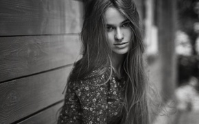 Picture look, girl, face, black and white, model, color, portrait, shirt, sexy, young, beauty, chic, russian, …
