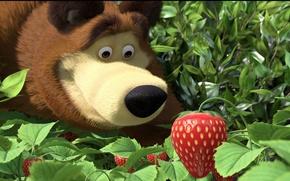 Picture forest, bear, strawberries, Masha and the bear, Masha, illustration