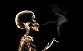 Picture smoke, cigarette, x-ray, Skeleton